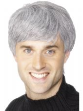 Corporate Male Grey Wig
